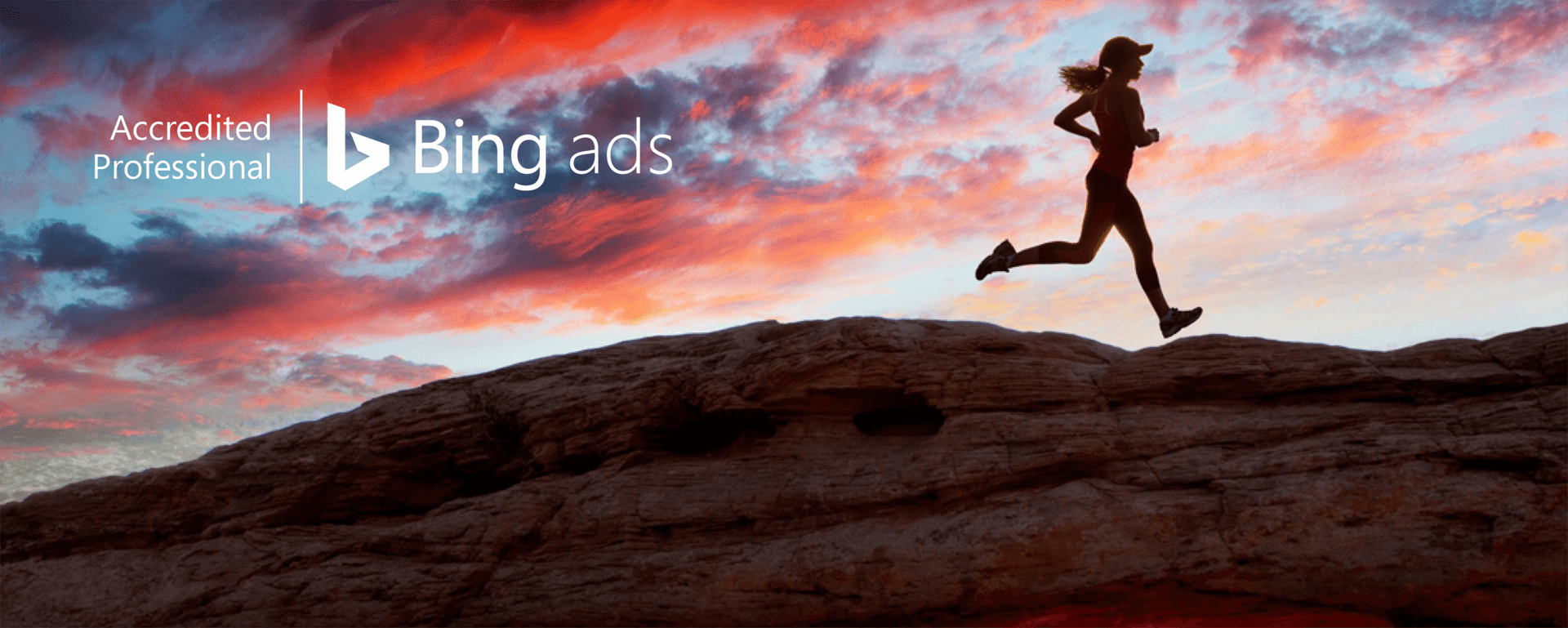 bing-ads-accredited-pro